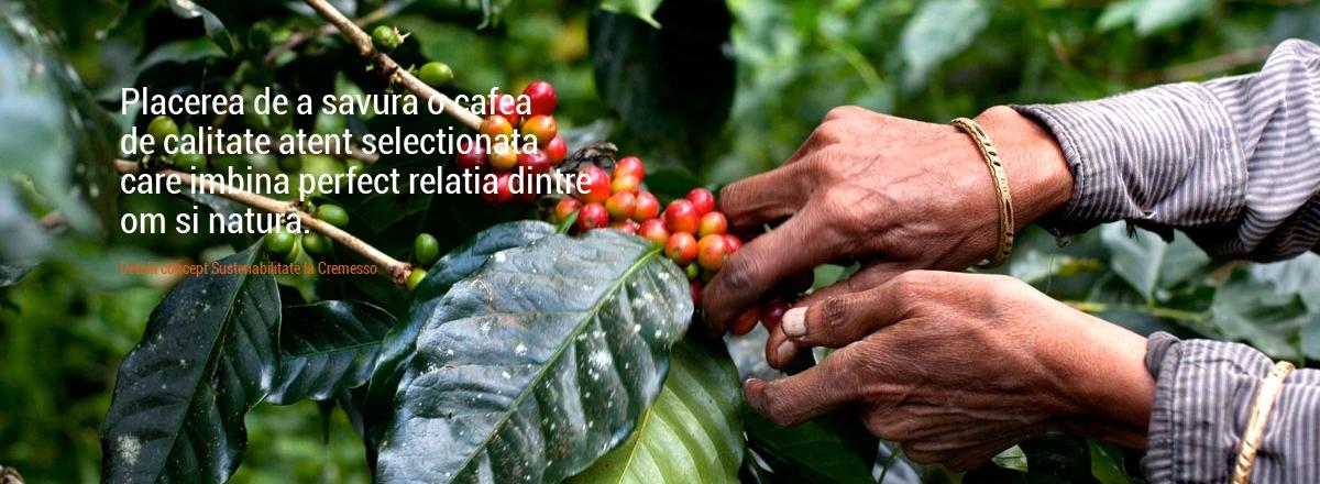 Placerea de a savura o cafea